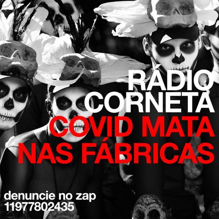 corneta53